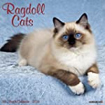 Ragdoll Cats 2016 Calendar