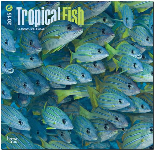 Tropical Fish 2015 Square 12x12 (Multilingual Edition) PDF