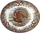 Royal Stafford Turkey Oval Platter, 35cm