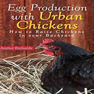Egg Production with Urban Chickens: How to Raise Chickens in Your Backyard | [Amber Richards]