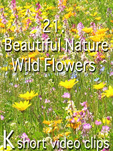 Clip: 21.Beautiful Nature--Wild Flowers