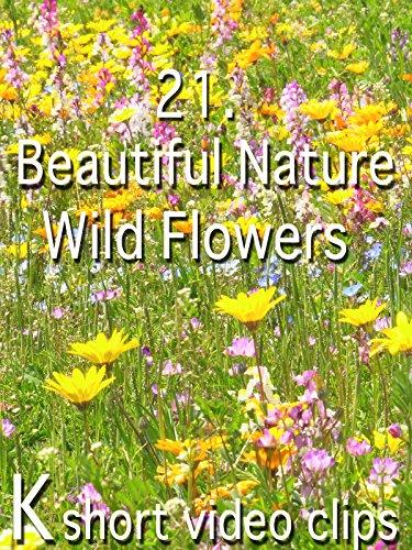 Clip: 21.Beautiful Nature--Wild Flowers