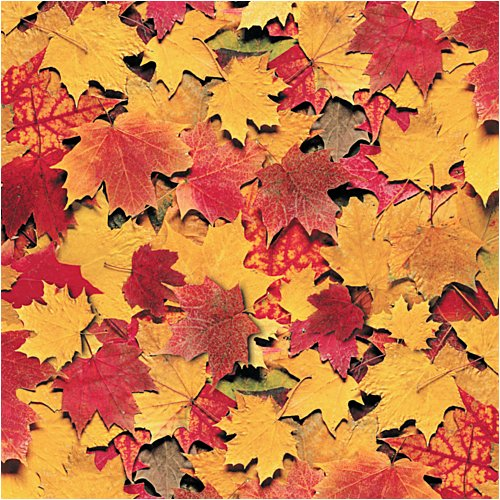 Picture of Fall Leaves Paper