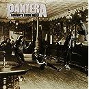 Cowboys From Hell (2LP 180 Gram Vinyl)