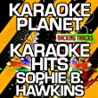 Damn I Wish I Was Your Lover (Karaoke Version With Background Vocals)