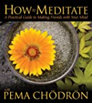 How to Meditate with Pema Chodron: A...
