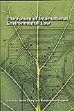 The Future of International Environmental Law