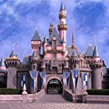 The Castle 10' x 10' CP Backdrop Computer Printed Scenic Background GladsBuy Backdrop ZJZ-827