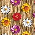 Wachstuch Breite 120 cm Länge wählbar - DHT7021 Blumen Bambus Bunt - Eckig Main abwaschbare Tischdecke Wachstücher Gartentischdecke von DHT-WT120cm - Gartenmöbel von Du und Dein Garten