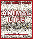 img - for One Million Things: Animal Life book / textbook / text book