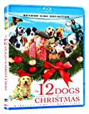 Cover art for  12 Dogs of Christmas [Blu-ray]