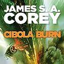 Cibola Burn: Book 4 of the Expanse | Livre audio Auteur(s) : James S. A. Corey Narrateur(s) : Jefferson Mays