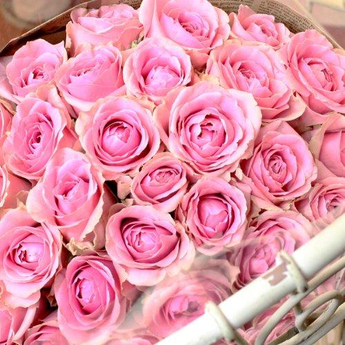 〔エルフルール〕バラの花束 20本 カラー:ピンク 結婚記念日 プレゼント 薔薇 誕生日祝い 贈り物
