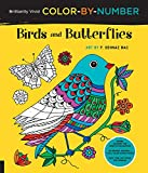 img - for Brilliantly Vivid Color-by-Number: Birds and Butterflies: Guided coloring for creative relaxation--30 original designs + 4 full-color bonus prints--Easy tear-out pages for framing book / textbook / text book