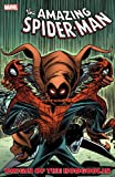 img - for Spider-Man: Origin of the Hobgoblin book / textbook / text book