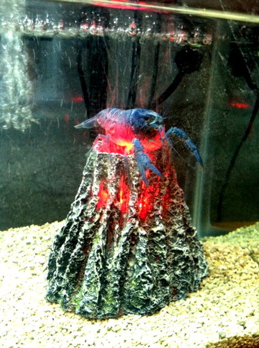 Hydor h2show volcano kit with red led and for Aquarium volcano decoration