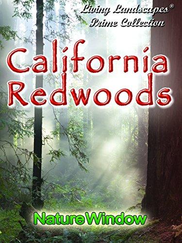Living Landscapes California Redwoods