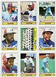 Montreal Expos 1979 Topps Baseball Team Set (26 Card Set) (Andre Dawson) (Larry Parrish) (Gary Carter) (Ellis Valentine) (Tony Perez) (Warren Cromartie) (Chris Speier) (Steve Rogers)