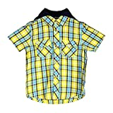 Chirpie Pie by Pantaloons Boy's SHIRT_Size_12-18 Months