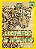 Leopards and Jaguars (A