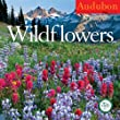 Audubon Wildflowers Calendar 2012