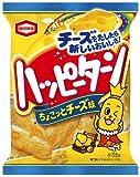 亀田製菓 ハッピーターンちょこっとチーズ味 100g×12袋