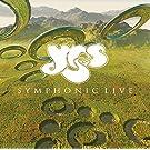 Symphonic Live [180 gm 2LP vinyl]