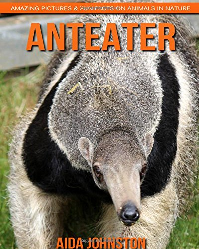 Anteater: Amazing Pictures & Fun Facts on Animals in Nature