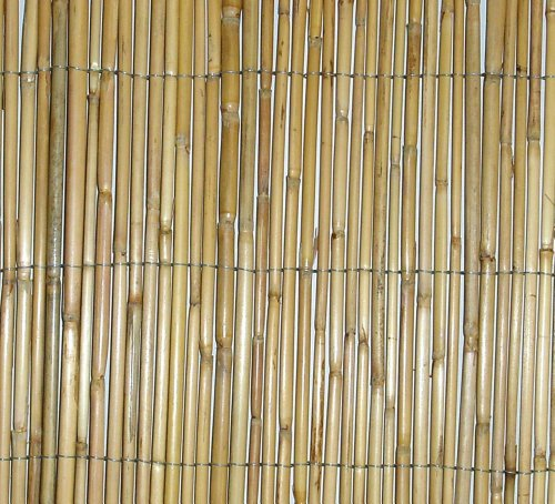 Botanico Reed Screening 1.8m x 3.8m