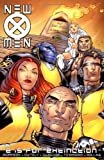 Grant Morrison New X-Men Volume 1: E Is For Extinction TPB: E Is for Extinction v. 1 (Graphic Novel Pb)