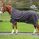 Horseware amigo bravo 12 wug lite couverture de pâturage, Excalibur/Silver & Red, 125 cm