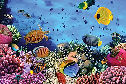 cheetah-leisure-1000-piece-coral-reef-jigsaw-puzzle