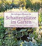 Die richtigen Pflanzen f�r Schattenpl�tze im Garten
