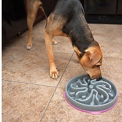 Kyjen 2873 Slo-Bowl Slow Feeder Slow Feed Interactive Bloat Stop Dog Bowl, Grey