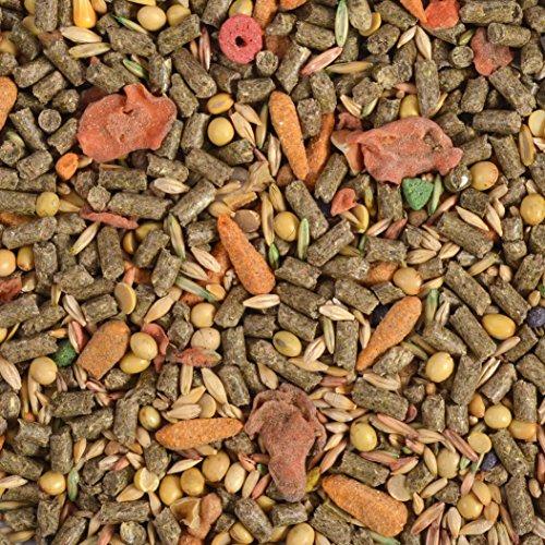 eCotrition-G2165-Essential-Blend-Diet-Adult-Rabbit-Food-5-Pound