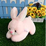 Generic 1Pc Lovely Rabbit Plush Toys Cute Pink Rabbit Doll Soft Plush Stuffed Dolls Toys