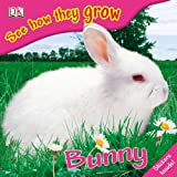 See How They Grow: Bunny