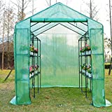 Outsunny 8'x6'x7' Large Garden Portable Green House Flower Plant Greenhouse with Shelves