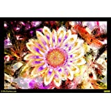 Abstract Flower Colours Canvas Medium ( 43 In X 30 In )