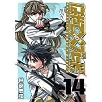 はやて×ブレード 14 (ヤングジャンプコミックス)