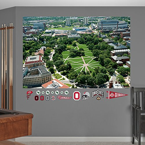 ncaa ohio state buckeyes the oval mural fathead wall decal sports logos logos and ohio state buckeyes on pinterest