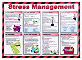 St John Ambulance A2 Poster Stress Management