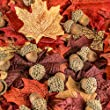 Autumn Mix of Realistic Acorns and Colorful Artificial Maple Leaves for Wedding Decor, Home Accenting and Crafting