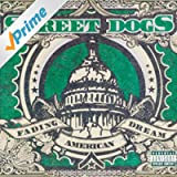 Fading American Dream [Explicit]