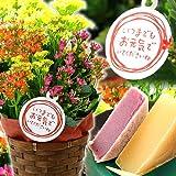 敬老の日プレゼント 生花カランコエ花鉢と和菓子きんつばセット