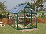 Greenline 6-by-8-Foot Backyard Hobby Greenhouse (Discontinued by Manufacturer)