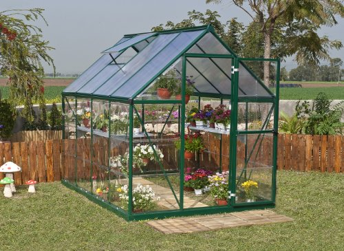 Greenline 6-by-8-Foot Backyard Hobby Greenhouse