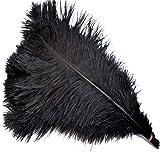 Sowder 5pcs Ostrich Feathers 16-18inch(40-45cm) Home Wedding Decoration(black) (Color: black)