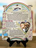 """Rainbow Bridge Pet Photo Memorial Plaque. Insert a photo of a cherished pet. Made of polystone and colofully hand-painted with a hand-carved look. Measures 10"""" x 8"""" and features the Rainbow Bridge poem on front. Easel not included. Can sit on..."""
