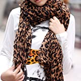 61kuzg5Aq7L. SL160  LE Fashion Leopard Pattern Shawl Scarf Wrap for Women